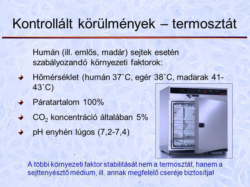 Kontrollált körülmények – termosztát