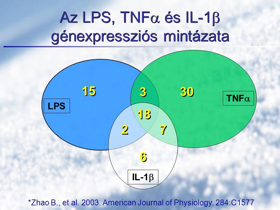 Az LPS, TNFa és IL-1b génexpressziós mintázata
