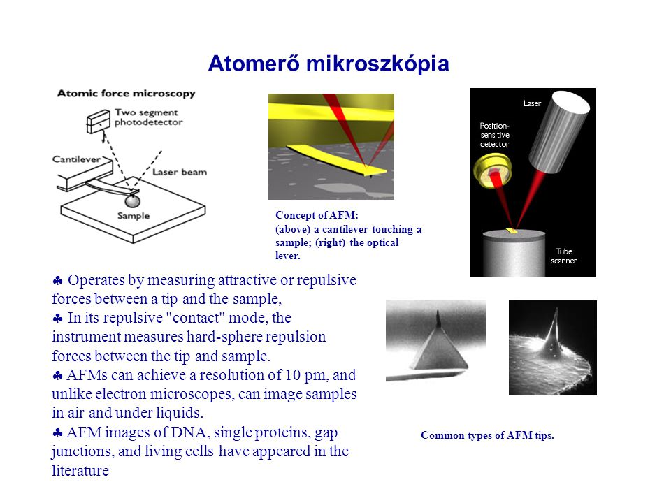 Atomerő mikroszkópia Concept of AFM: (above) a cantilever touching a sample; (right) the optical lever.