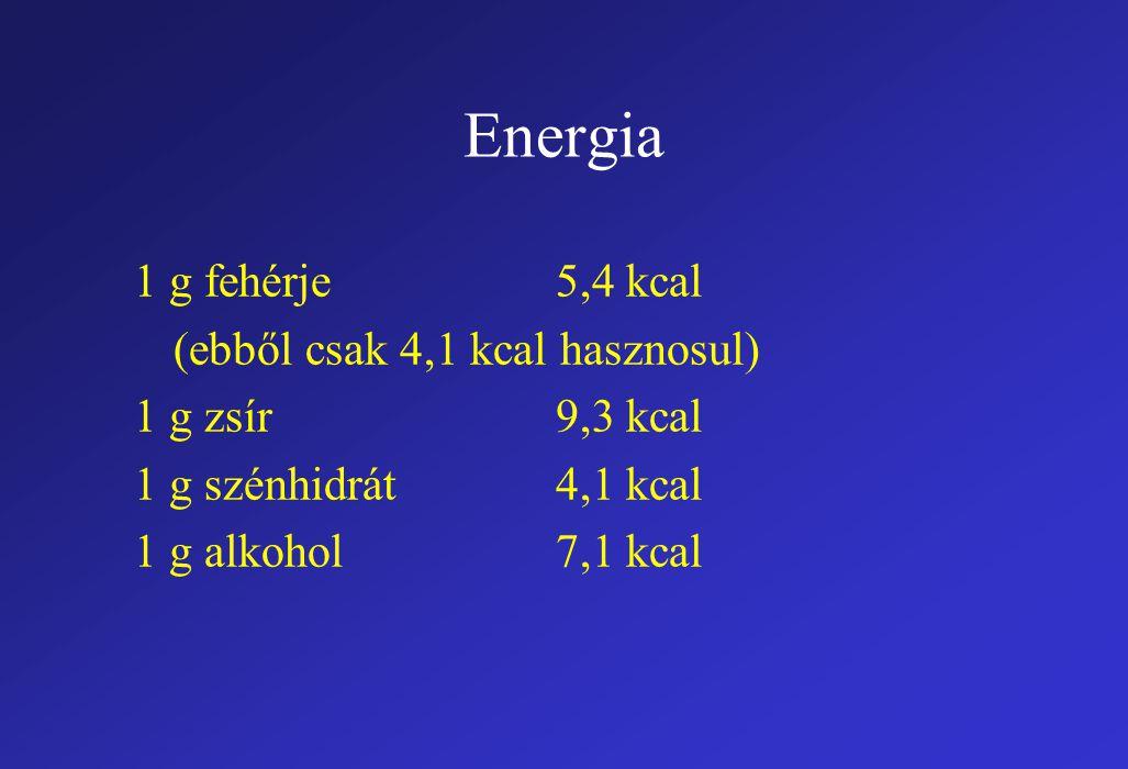 Energia 1 g fehérje 5,4 kcal (ebből csak 4,1 kcal hasznosul)