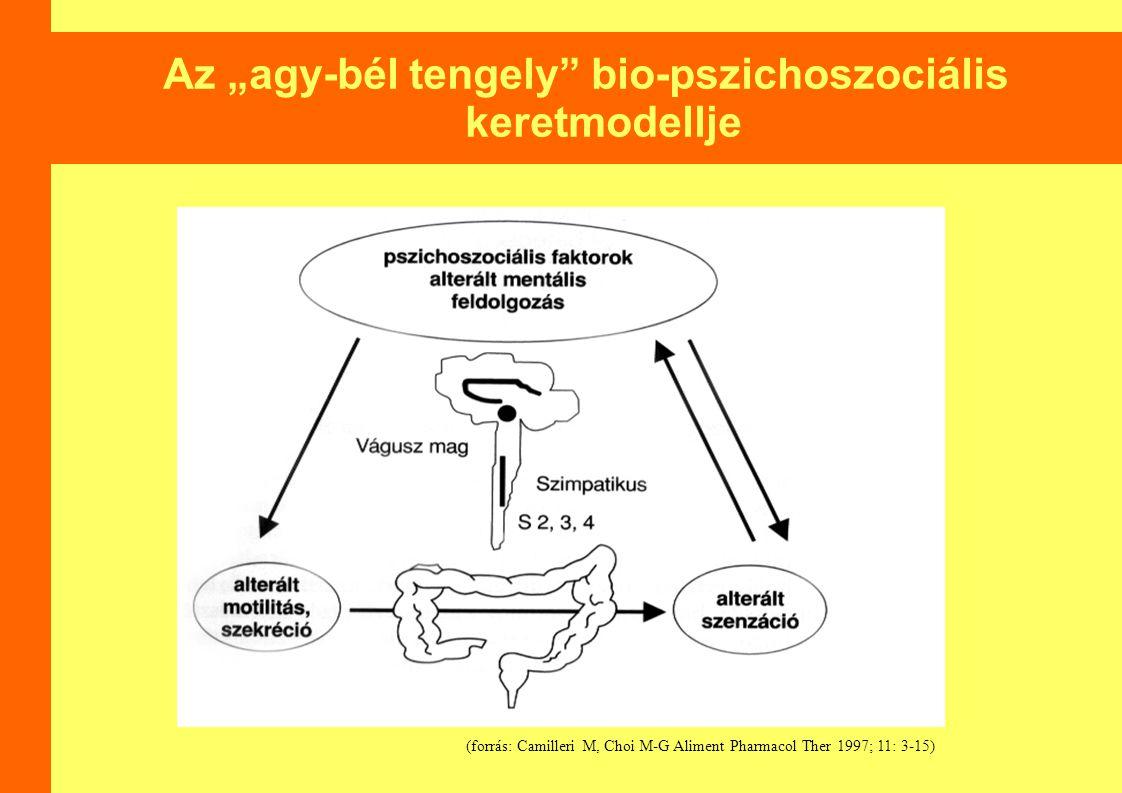 """Az """"agy-bél tengely bio-pszichoszociális keretmodellje"""