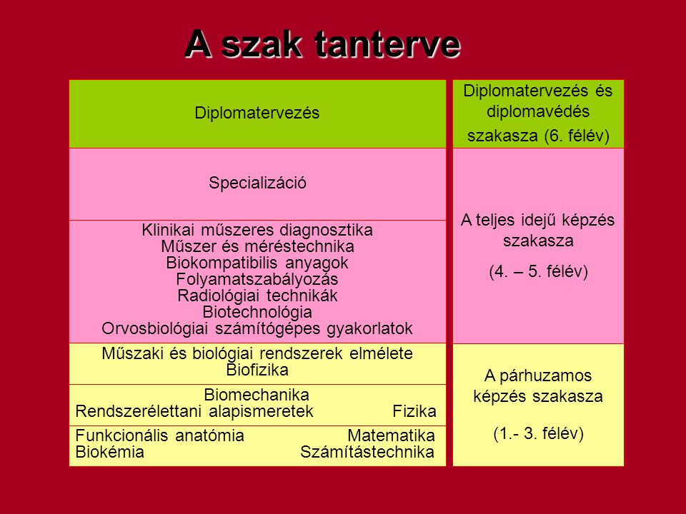 A szak tanterve Diplomatervezés és diplomavédés szakasza (6. félév)
