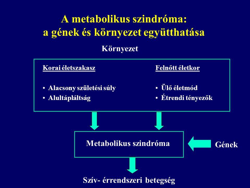 A metabolikus szindróma: a gének és környezet együtthatása