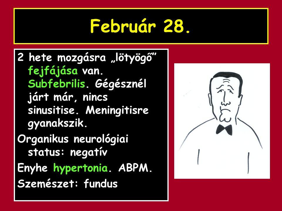 """Február 28. 2 hete mozgásra """"lötyögő fejfájása van. Subfebrilis. Gégésznél járt már, nincs sinusitise. Meningitisre gyanakszik."""