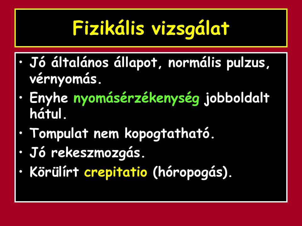 Fizikális vizsgálat Jó általános állapot, normális pulzus, vérnyomás.