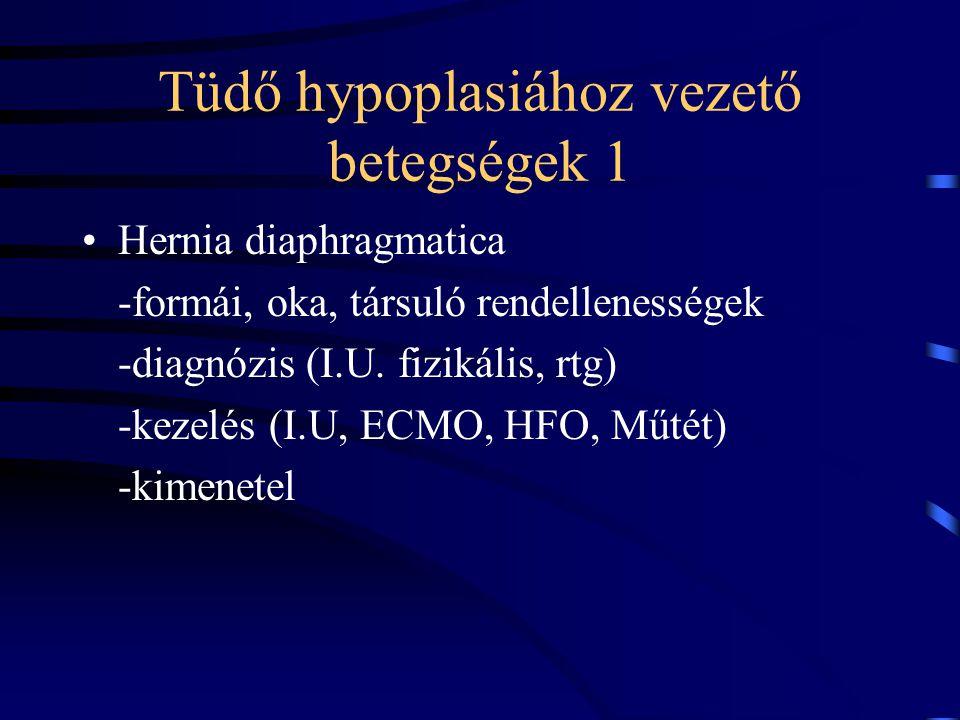 Tüdő hypoplasiához vezető betegségek 1
