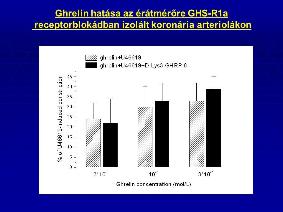 Ghrelin hatása az érátmérőre GHS-R1a receptorblokádban izolált koronária arteriolákon