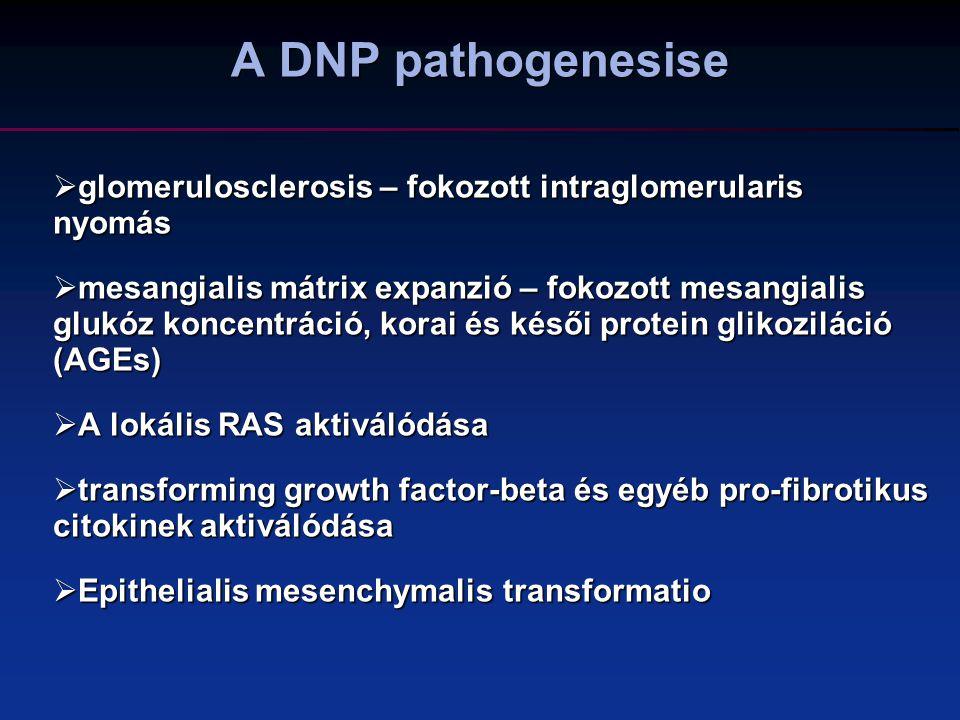 A DNP pathogenesise glomerulosclerosis – fokozott intraglomerularis nyomás.