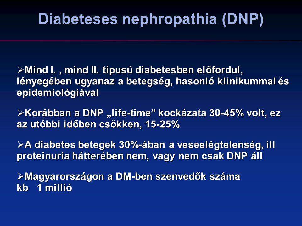 Diabeteses nephropathia (DNP)