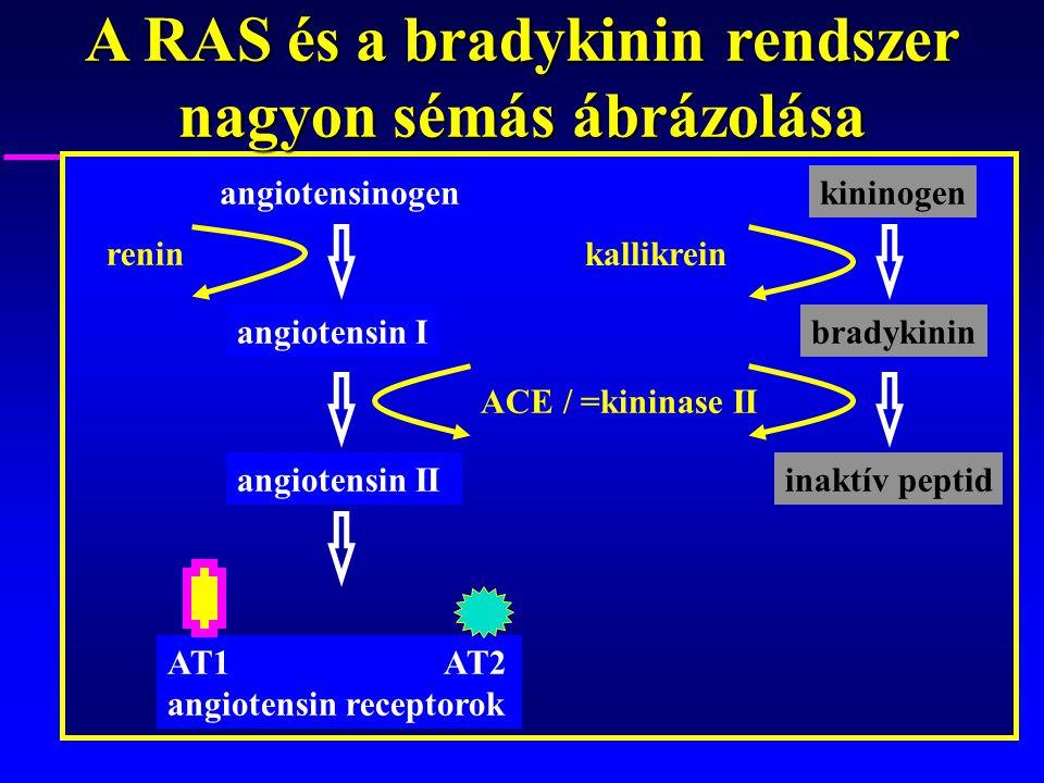 A RAS és a bradykinin rendszer nagyon sémás ábrázolása