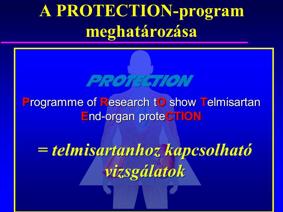 A PROTECTION-program meghatározása