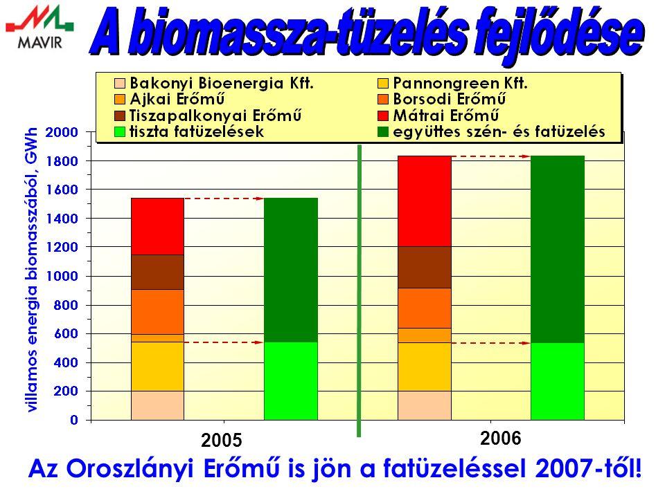 A biomassza-tüzelés fejlődése