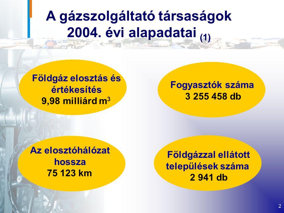 A gázszolgáltató társaságok 2004. évi alapadatai (1)