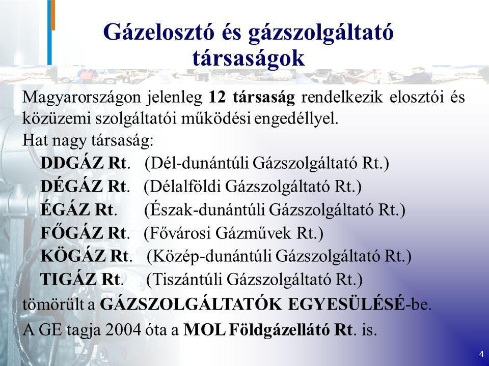Gázelosztó és gázszolgáltató társaságok