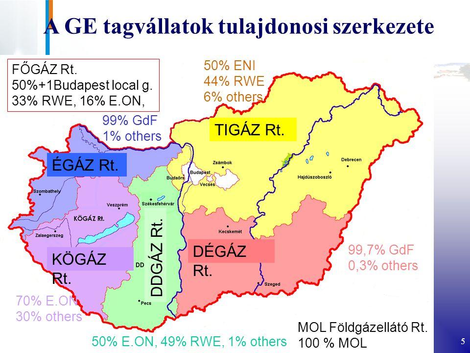 A GE tagvállatok tulajdonosi szerkezete