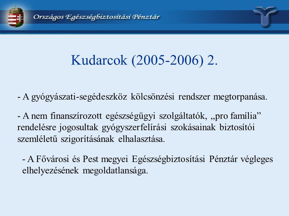 Kudarcok (2005-2006) 2. - A gyógyászati-segédeszköz kölcsönzési rendszer megtorpanása.