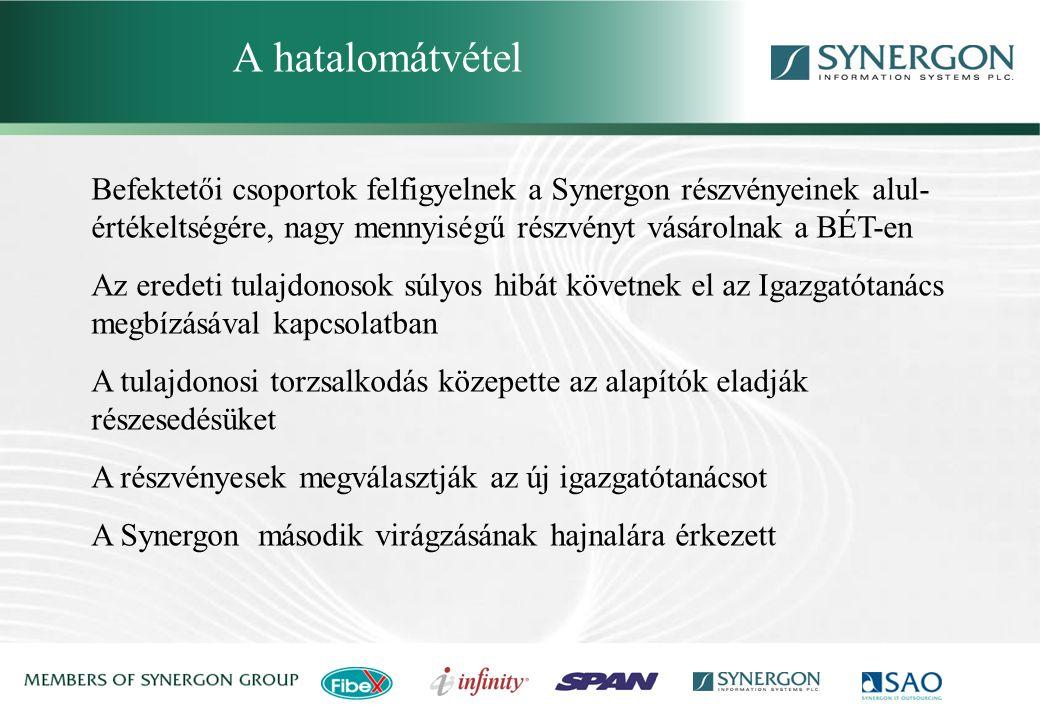 Synergon Group, Synergon Information Systems Plc. Tanulságok