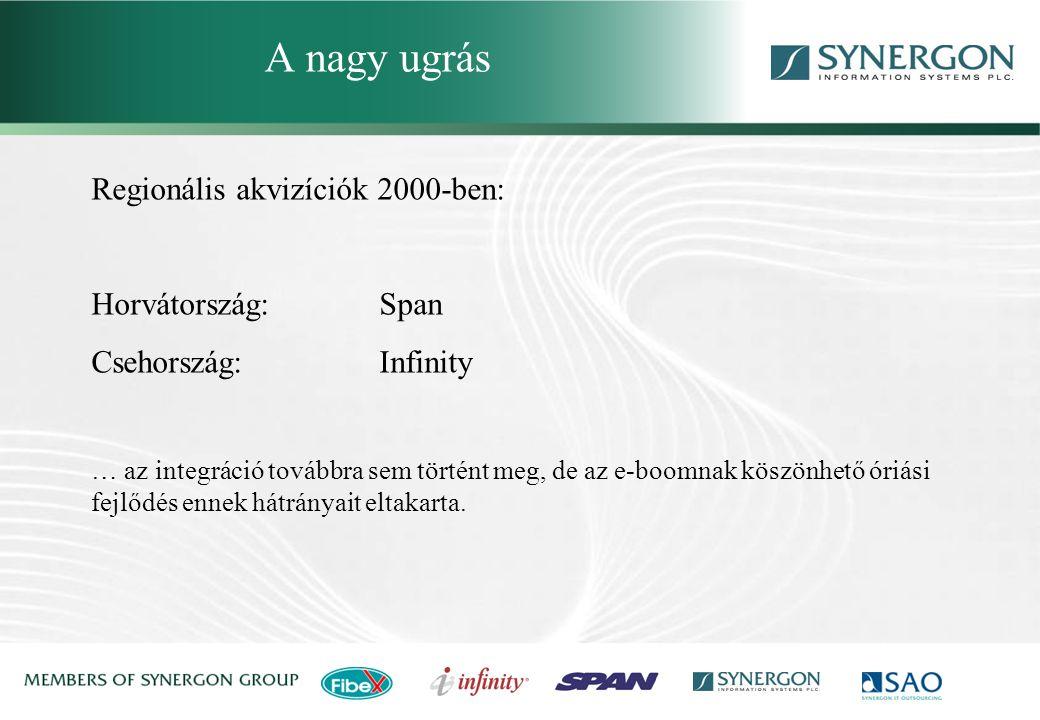 Synergon Group, Synergon Information Systems Plc. A zuhanás