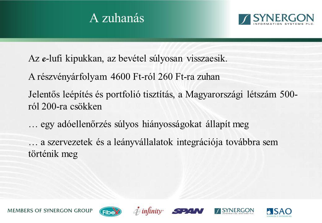 Synergon Group, Synergon Information Systems Plc. A kilábalás