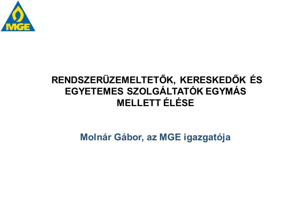 Molnár Gábor, az MGE igazgatója
