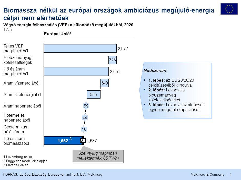 % Az EU biomassza igénye a következő 10 évben növekedni fog, több fontos tényezőnek köszönhetően.