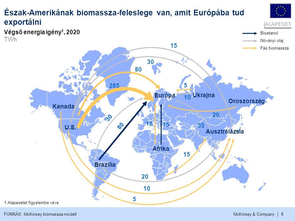 Magyarországnak elsősorban biomasszára kell támaszkodnia ahhoz, hogy elérje az EU által kitűzött 13%-os célt
