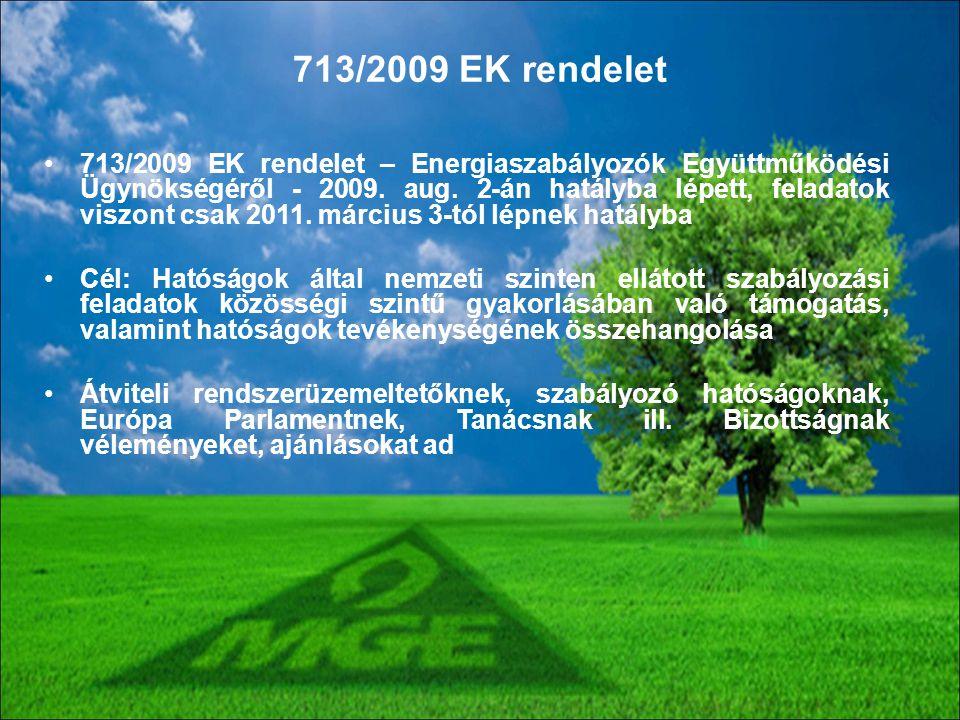713/2009 EK rendelet
