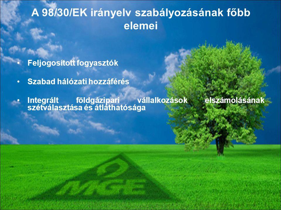 A 98/30/EK irányelv szabályozásának főbb elemei