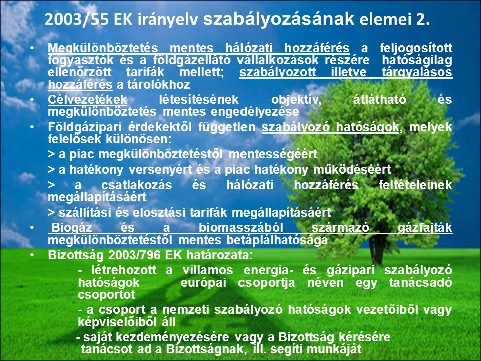 2003/55 EK irányelv szabályozásának elemei 2.