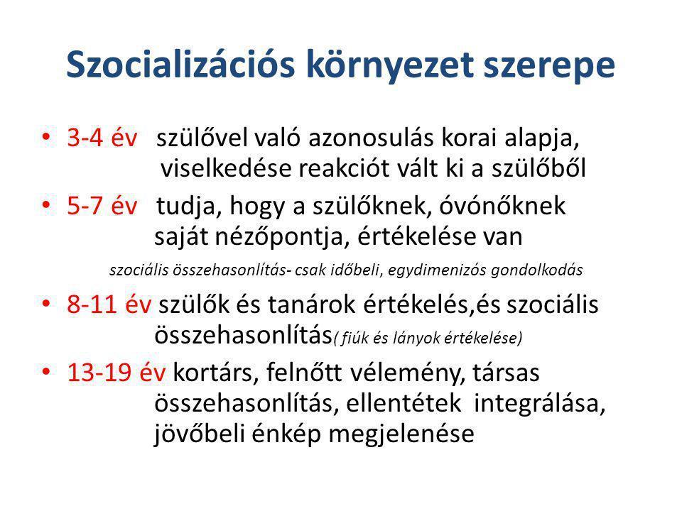 Szocializációs környezet szerepe