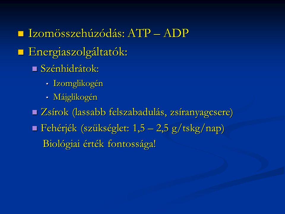 Izomösszehúzódás: ATP – ADP Energiaszolgáltatók: