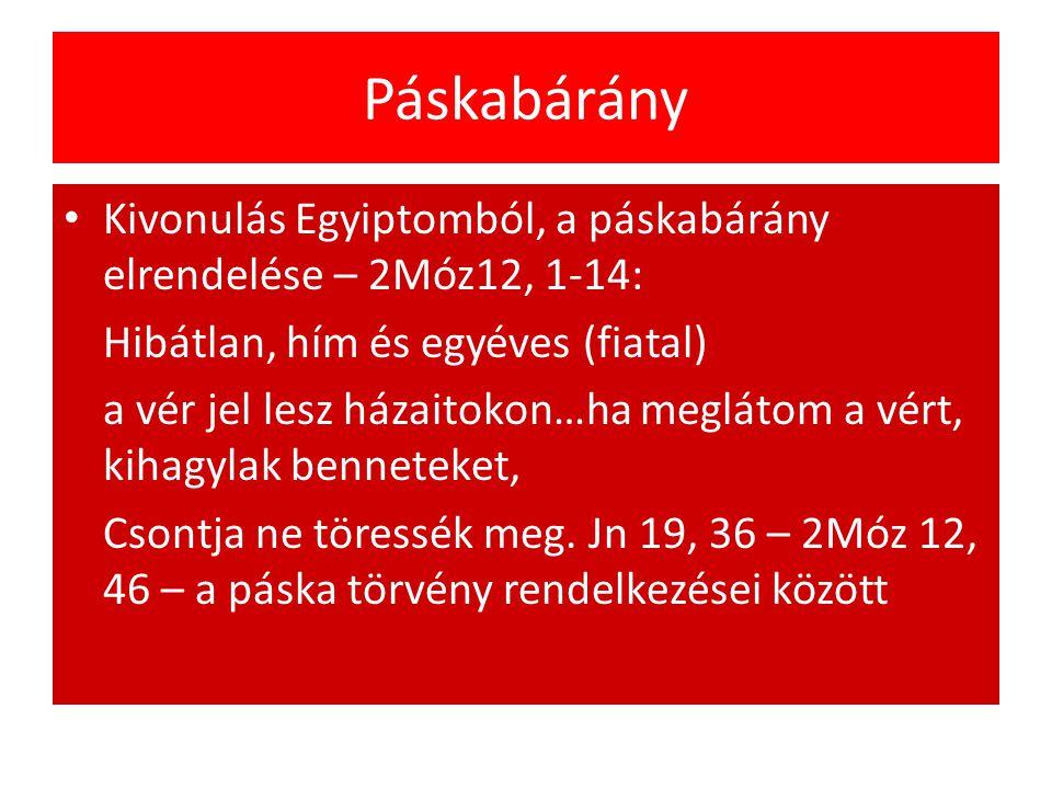 Páskabárány Kivonulás Egyiptomból, a páskabárány elrendelése – 2Móz12, 1-14: Hibátlan, hím és egyéves (fiatal)