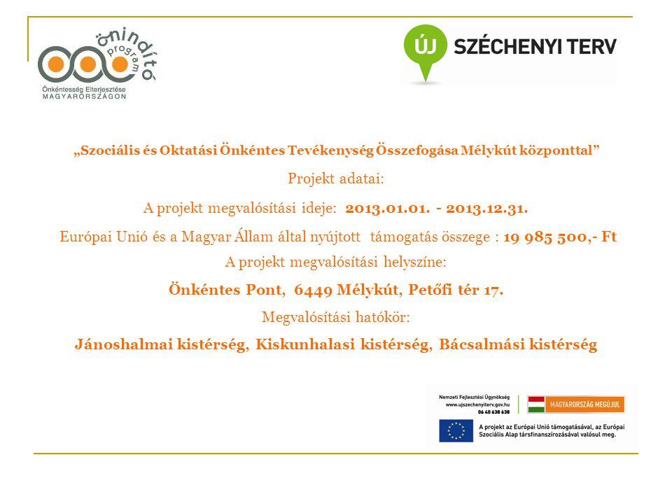 A projekt megvalósítási ideje: 2013.01.01. - 2013.12.31.