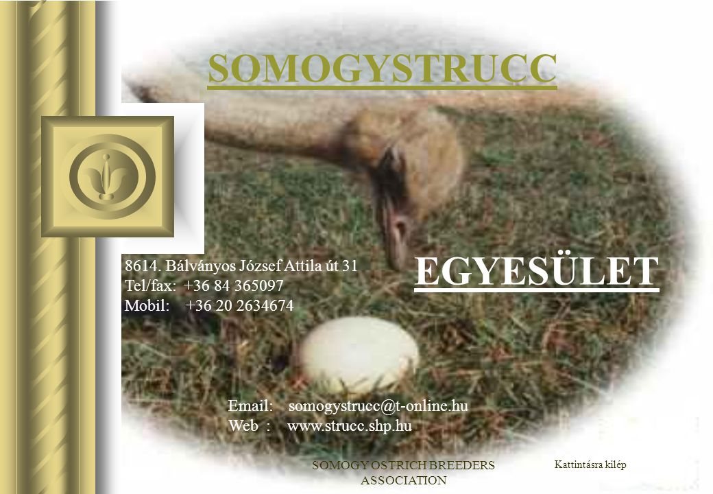 SOMOGY OSTRICH BREEDERS ASSOCIATION