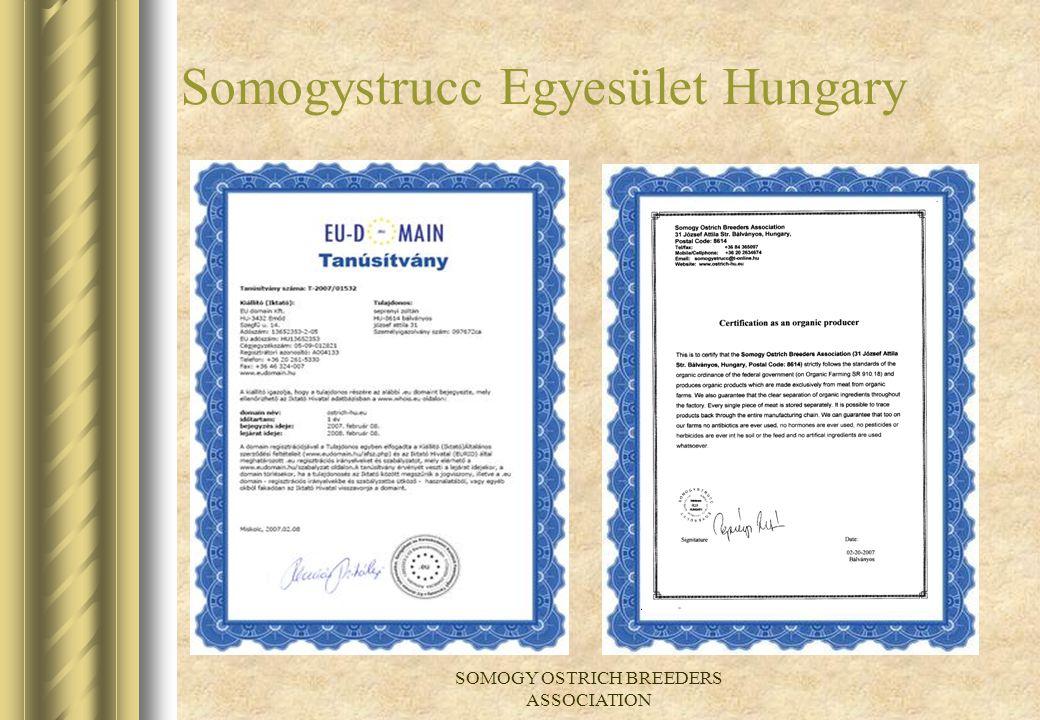 Somogystrucc Egyesület Hungary