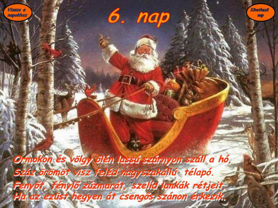 6. nap Ormokon és völgy ölén lassú szárnyon száll a hó,