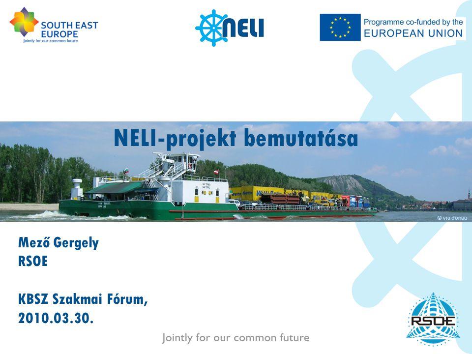 NELI-projekt bemutatása