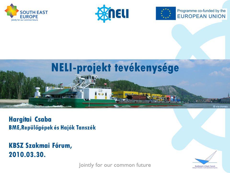NELI-projekt tevékenysége
