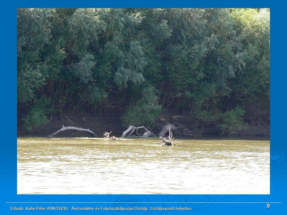 Gondot jelent a középvízi meder élben lévő fák folyóba dőlése, melyek veszélyeztethetik a hajózás biztonságát. Elegendő forrás hiányában csak a hajózóútban leakadt fák eltávolítását tudjuk elvégezni.
