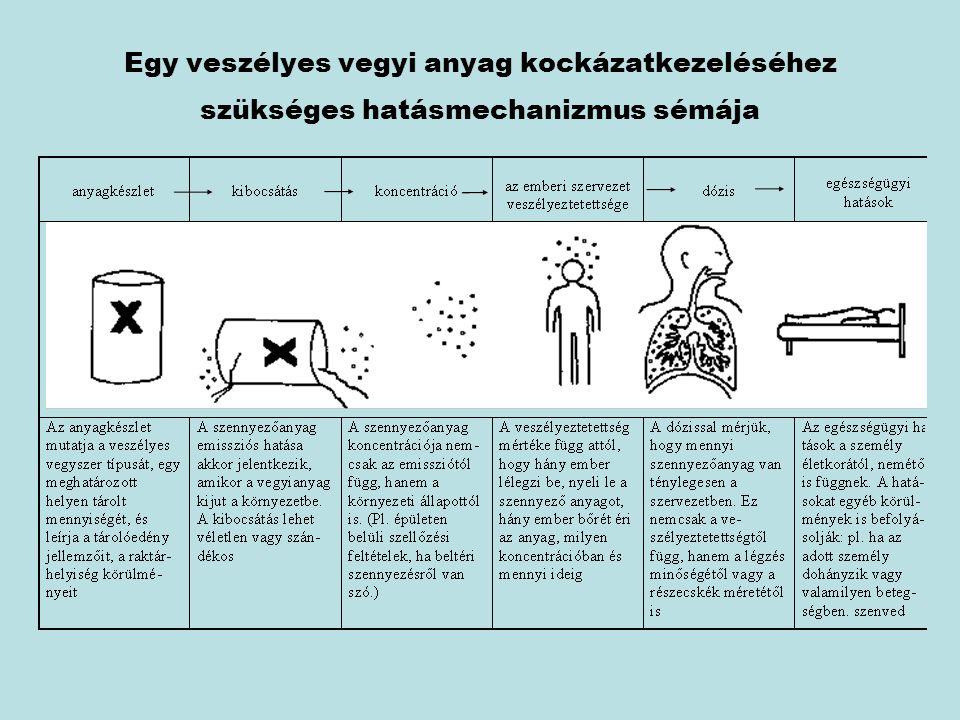 Egy veszélyes vegyi anyag kockázatkezeléséhez szükséges hatásmechanizmus sémája
