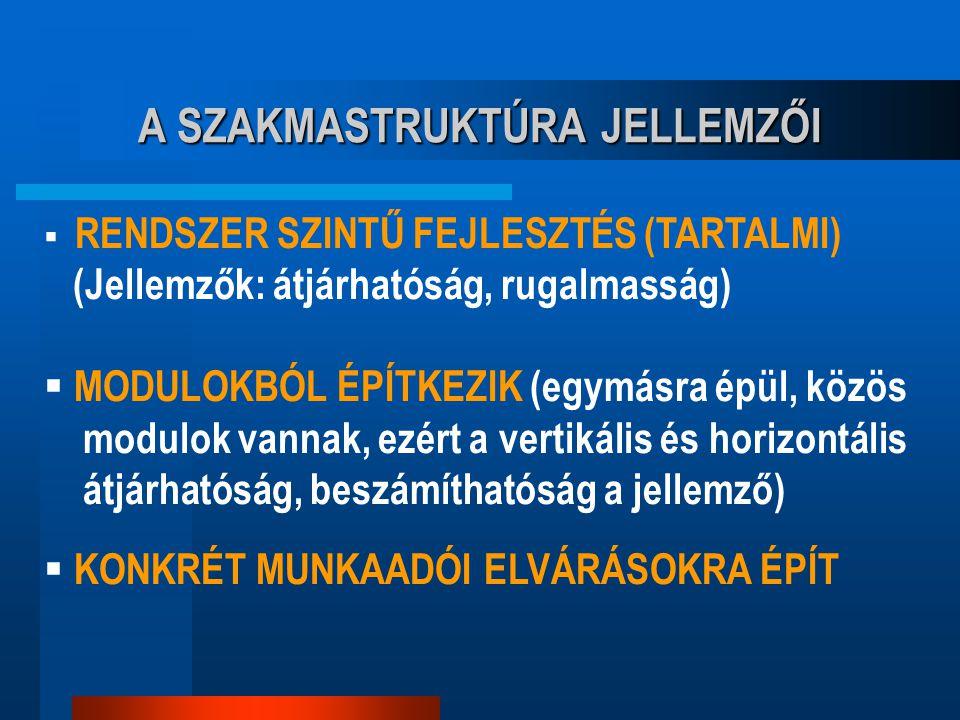 A SZAKMASTRUKTÚRA JELLEMZŐI