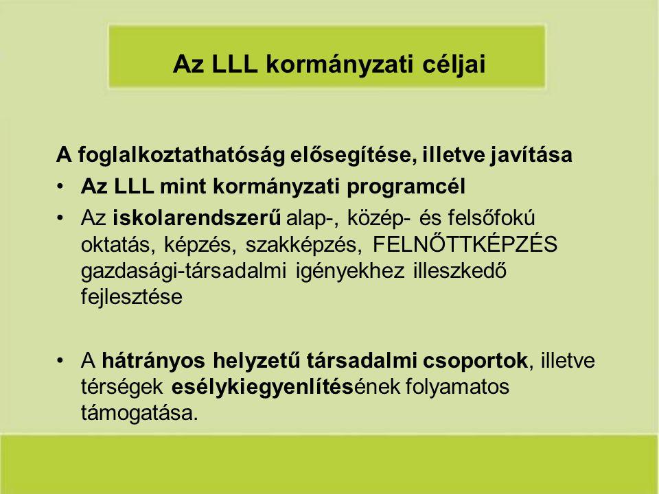 Az LLL kormányzati céljai