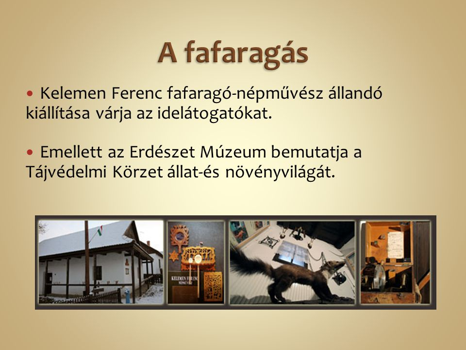 A fafaragás Kelemen Ferenc fafaragó-népművész állandó kiállítása várja az idelátogatókat.