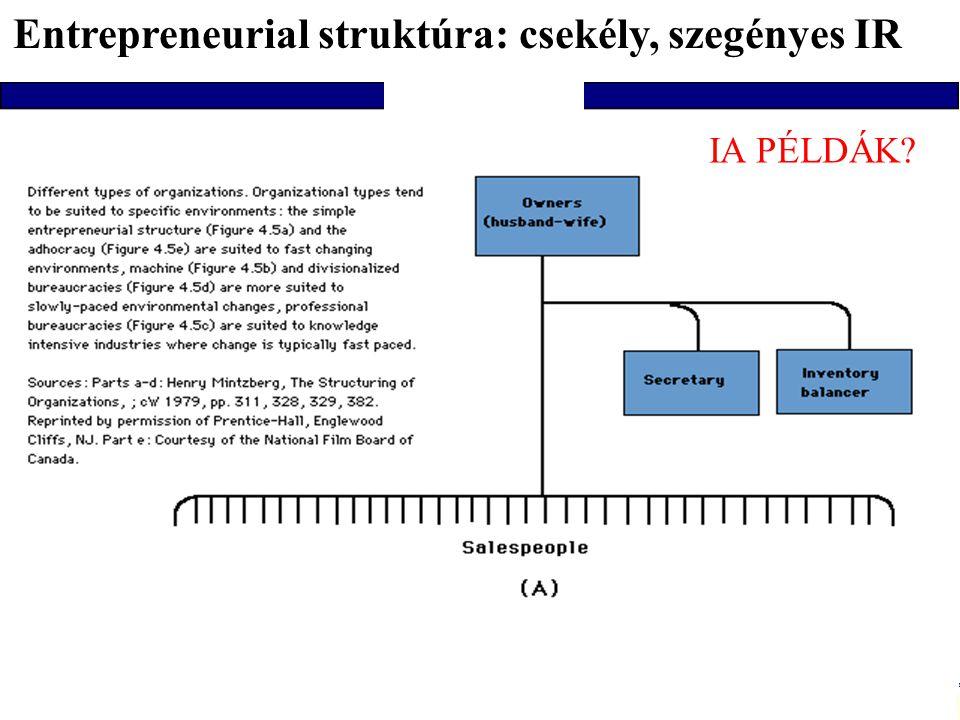 Entrepreneurial struktúra: csekély, szegényes IR