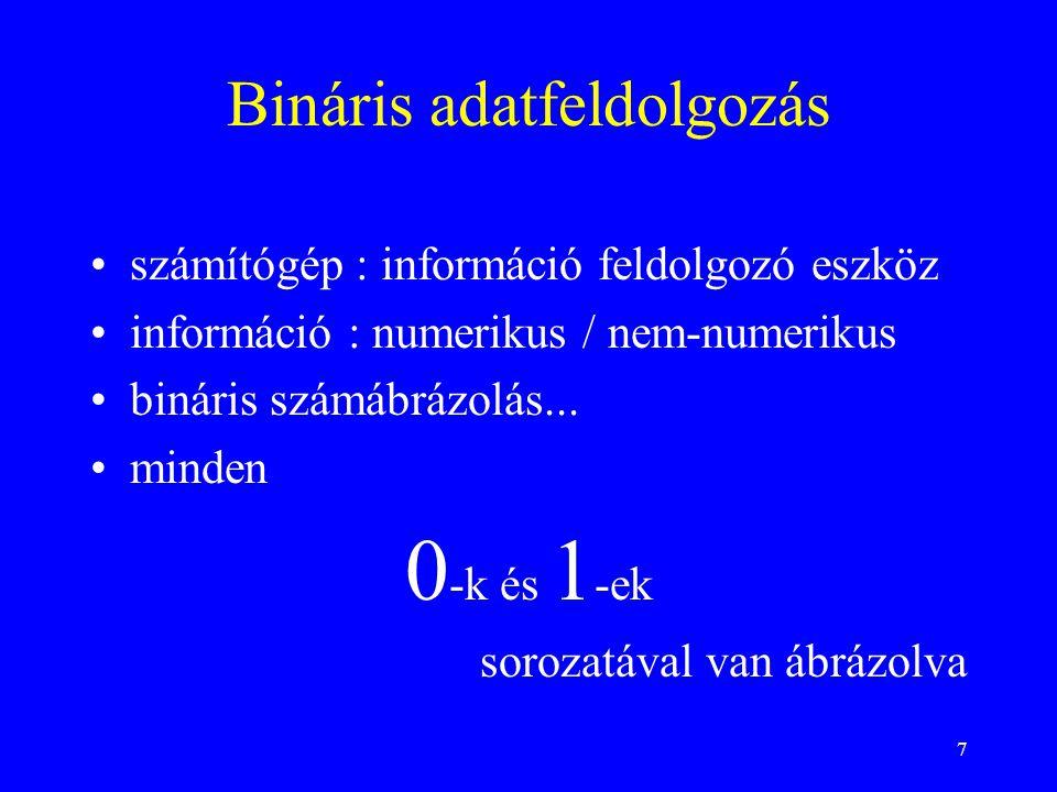 Bináris adatfeldolgozás