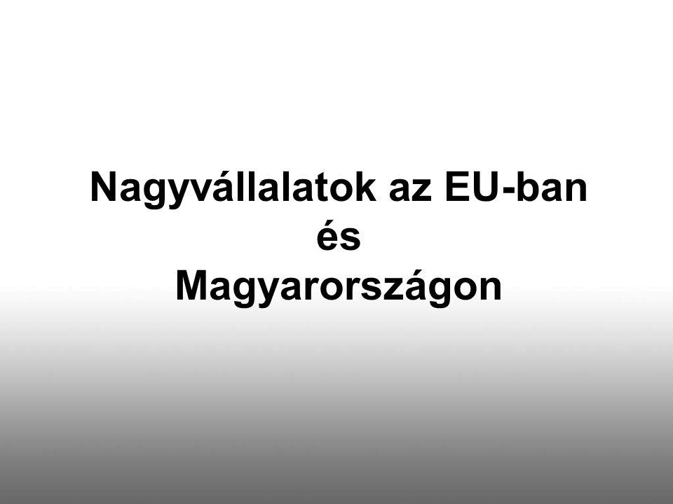 Nagyvállalatok az EU-ban