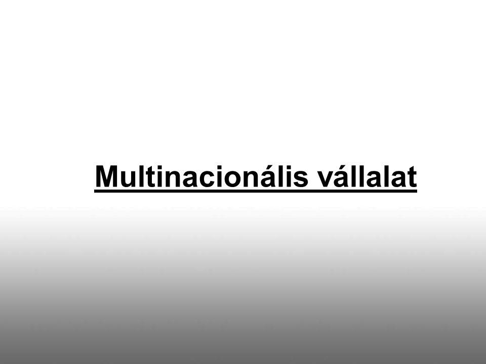 Multinacionális vállalat