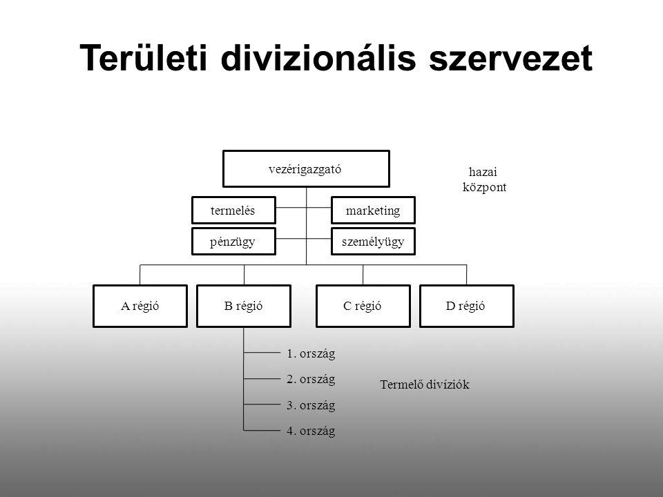 Területi divizionális szervezet