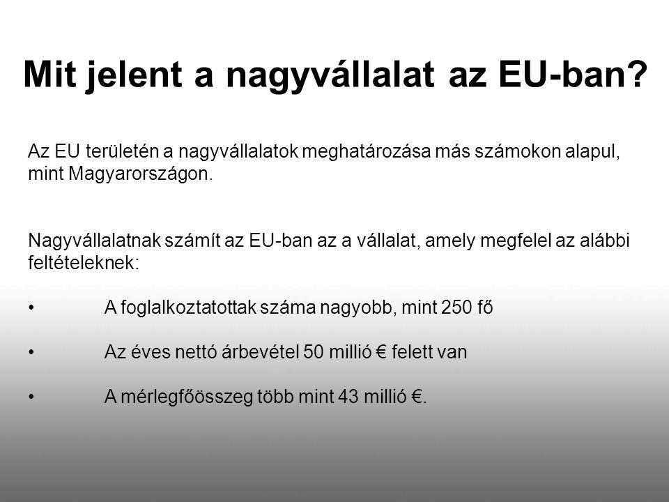 Mit jelent a nagyvállalat az EU-ban