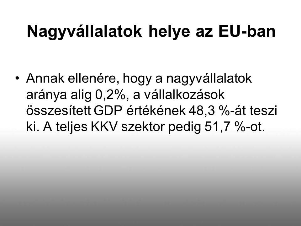 Nagyvállalatok helye az EU-ban